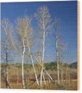 Aspens Rule Wood Print