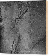 Asphalt-water-tree Abstract Refection 03 Wood Print