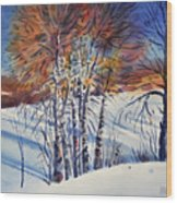 Aspin In The Snow Wood Print by Donald Maier