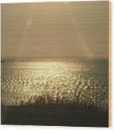 Assateague At Sunset Wood Print