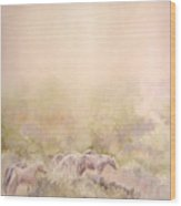 Assateague Ponies Wood Print