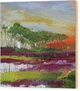 Assateague Sunset Wood Print