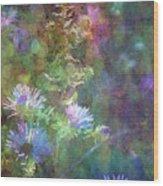 Aster 5077 Idp_2 Wood Print