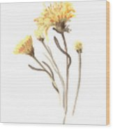 Aster Flower Watercolor Art Print Painting Wood Print