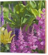 Astilbe In The Garden Wood Print