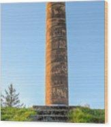Astoria Column Wood Print
