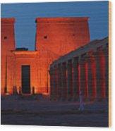 Aswan Temple Of Philea Egypt Wood Print
