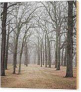 Path To Asylum Wood Print
