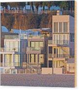 At Home On Santa Monica Beach Wood Print