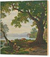 At Lake Sempach Wood Print