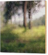At Menashe Forest Wood Print