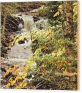 At The Beginning Of Chapel Falls Wood Print