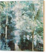 At The Clark Vi Wood Print