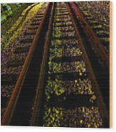 At The End Of A Railroad Track Wood Print