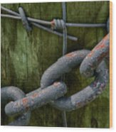 At The Fence Gate - Chain, Wire, And Post Wood Print