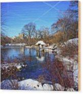At The Frozen Lake Wood Print