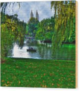 At The Lake In Central Park Wood Print
