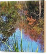 At The Pond Wood Print