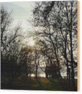 At The Rhine Bank Wood Print