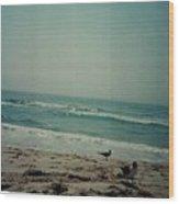 At The Seashore. Wood Print