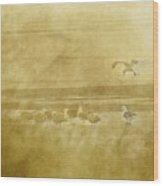 At The Seashore Wood Print