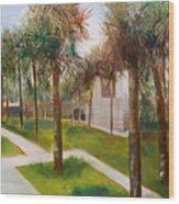 Atalaya Huntington Beach Sc Wood Print