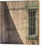 Atalaya Shadow Wood Print