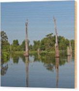 Atchafalaya Basin 19 Wood Print