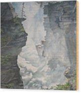 Athabasca Falls Alberta Wood Print