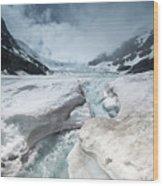Athabasca Glacier, Alberta, Canada Wood Print
