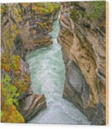 Athabasca River Canyon Wood Print