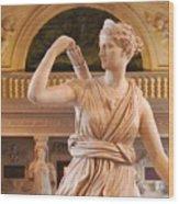 Athena Statue Wood Print