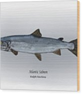 Atlantic Salmon Wood Print