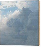 Atmospheric Barcode 19 7 2008 16 Wood Print