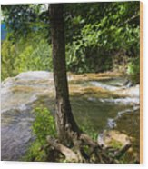 Atop Falling Spring Fall Wood Print