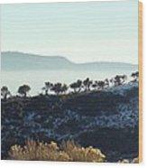 Atop Peavine Mountain Wood Print