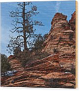 Atop The Layers Wood Print