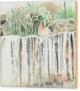 Atop The Waterfall Wood Print