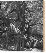 Attack Of The Oak Wood Print