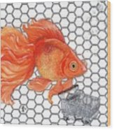 Attention Goldfish Shoppers Wood Print