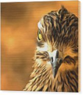 Attitude...with Feathers Wood Print