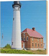 Au Sable Lighthouse In Pictured Rocks National Lakeshore-michigan  Wood Print