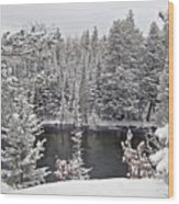 Au Sable River Overlook Wood Print