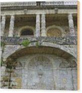 Au Vieux Chateau De Vayres Wood Print