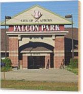 Auburn, Ny - Falcon Park Wood Print