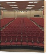 Auditorium Wood Print