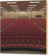 Auditorium Wood Print