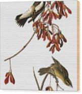 Audubon: Bobolink Wood Print