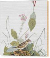 Audubon: Bunting Wood Print