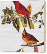 Audubon: Cardinal Wood Print